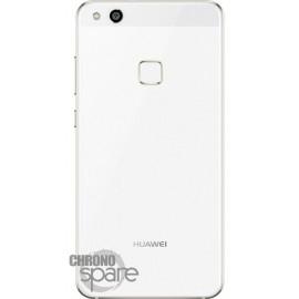 Vitre arrière Huawei P10 Lite or
